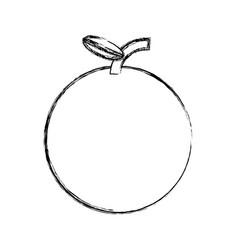 sweet orange fruit vector image