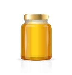 Glass Jars Bottles Empty Transparent Honey vector image vector image