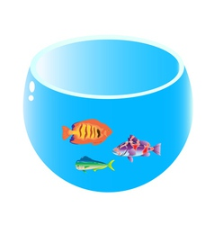 home aquarium with three fish vector image vector image