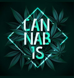 cannabis typography poster with fluorescent frame vector image