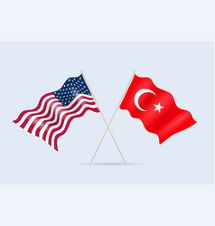 flag usa and turkey together a symbol of vector image