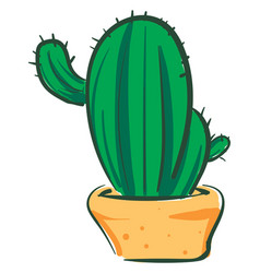 Long cactus in orange pot or color vector