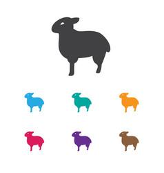 Of animal symbol on sheep icon vector