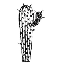 monochrome blurred silhouette of cactus with small vector image vector image
