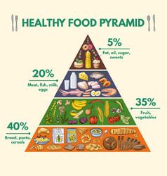 healthy food pyramid infographic pictures with vector image