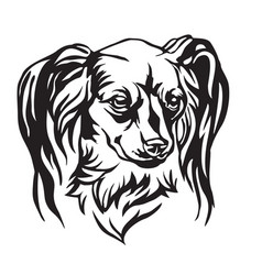 Decorative portrait dog long haired russian vector