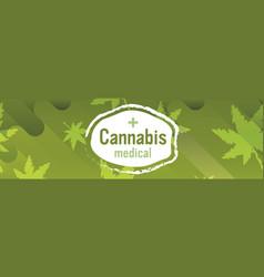 medical cannabis sticker marijuana leaves vector image