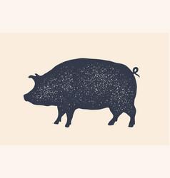 pig pork vintage logo retro print poster for vector image