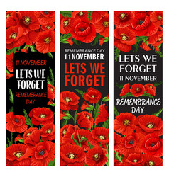 Red poppy flower banner for remembrance day design vector
