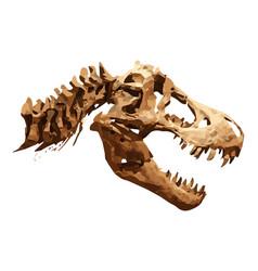 Skeleton of tyrannosaurus rex t-rex vector
