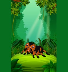 Tarantula in the clear and green forest vector