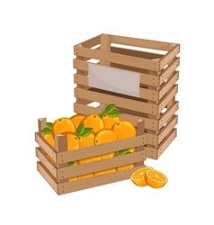Wooden box full of orange isolated vector