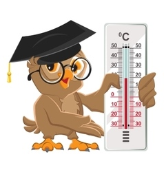 Owl teacher holding thermometer Indoor vector image vector image