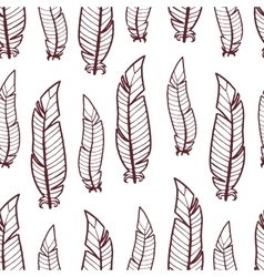 Pattern of feathers vector image vector image