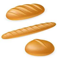 french style bread vector image
