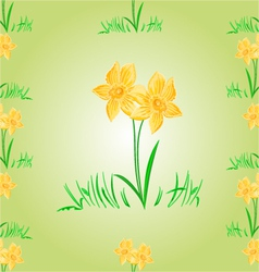Daffodil Easter flower seamless texture Easter vector image vector image