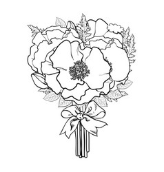 Black and white sketch of poppies tied with ribbon vector