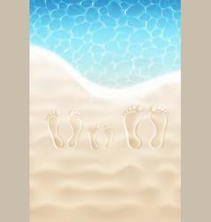Family footprints on sand vector