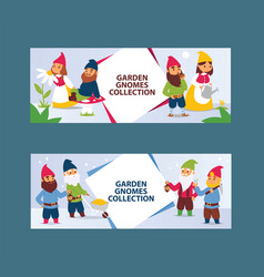 garden gnome beard dwarf characters cadrs and vector image