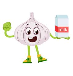 garlic with milk on white background vector image