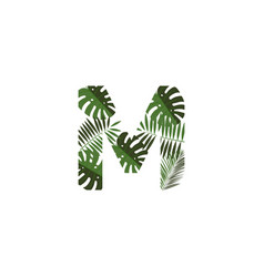 logo letter m tropical leaves vector image