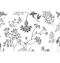 wild flowers blossom branch seamless pattern vector image
