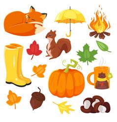cartoon style set of autumn symbols fox pumpkin vector image vector image