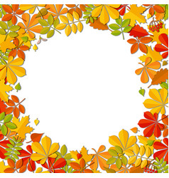 Autumn falling leaf frame isolated on white vector