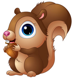 cute baby squirrel cartoon a holding acorns vector image