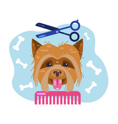 Dogs grooming haircut puppy salon for animals vector