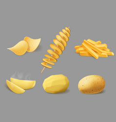 potato chips fries and tornado realistic food vector image