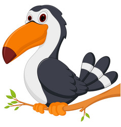 cute toucan bird cartoon sit on tree vector image vector image