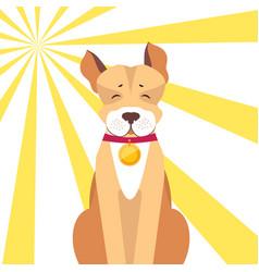 Basenji dog with closed eyes on sunny background vector