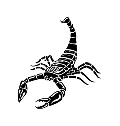 Black and white Scorpion for tattoos zodiac sign vector
