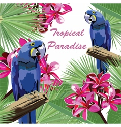 Exotic tropical card with parrot birds vector image