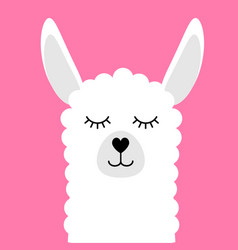 flat cartoon llama face with smile on pink vector image
