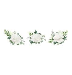 Floral bouquet set of garden white powder peony vector