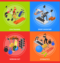 interior gym with exercise and gymnastic equipment vector image