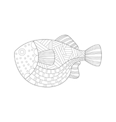 Large tropical fish sea underwater nature adult vector