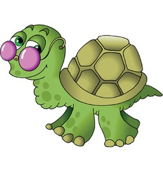 little turtle vector image