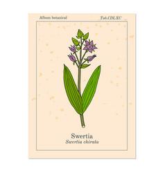 Swertia chirata medicinal plant vector