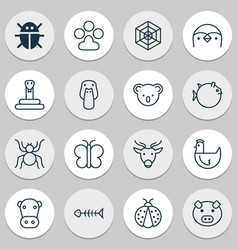 Zoology icons set with mallard spider web vector
