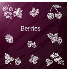 chalk berries vector image vector image