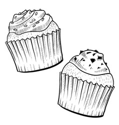 doodle cupcakes vector image