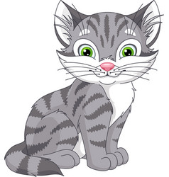 Grey cat vector