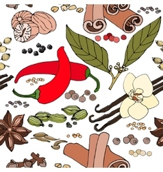 seamless color pattern of spice and herbs vector image