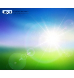 Summer sunrise vector image