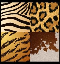 Wild animals skin textures vector