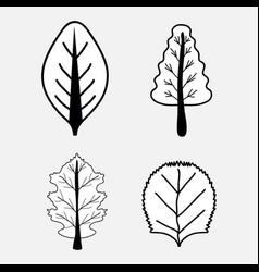 Nice set of trees with leaves vector