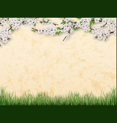 branches with flowers and leaves on stucco wall vector image
